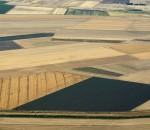 Guido Alimento, Geometrie estive 2, fotografia con elaborazione digitale su forex