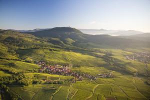 Route des Vins d'Alsace--®Tristan Vuano