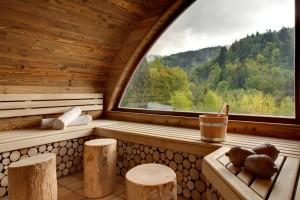 Sauna - Nature Spa - La Cheneaudière--®Jérome Mondière